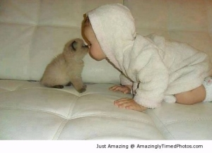 Amazing Two-lovable-babies-resizecrop--
